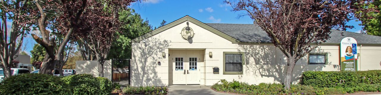 Primrose School of Pleasanton image 29