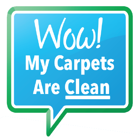 Wow My Carpets Are Clean image 5