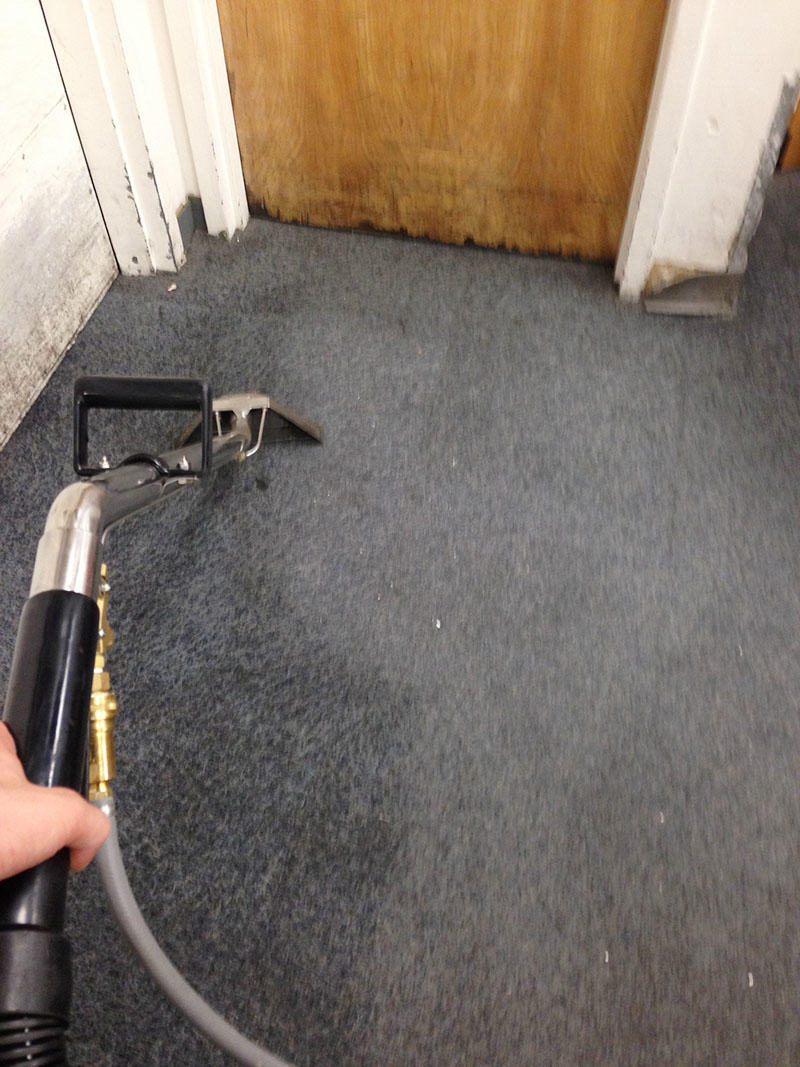 Accurate Carpet Cleaning & Maintenance, Inc image 3