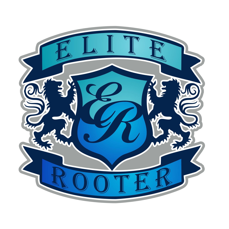 Elite Rooter Phoenix image 1
