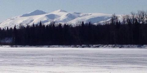 Anchorage Suzuki/Arctic Cat image 0