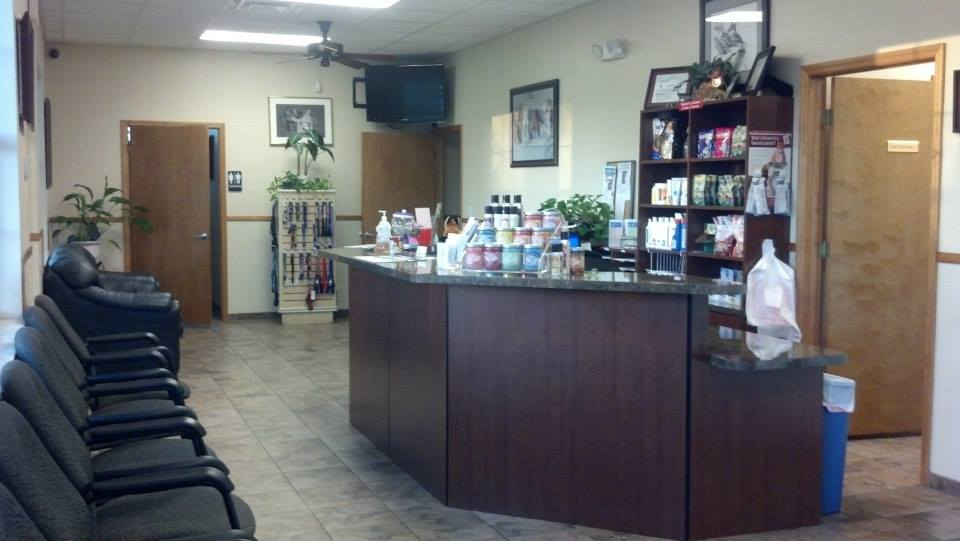 Fox and Friends Animal Hospital in Sun City Center, FL, photo #10