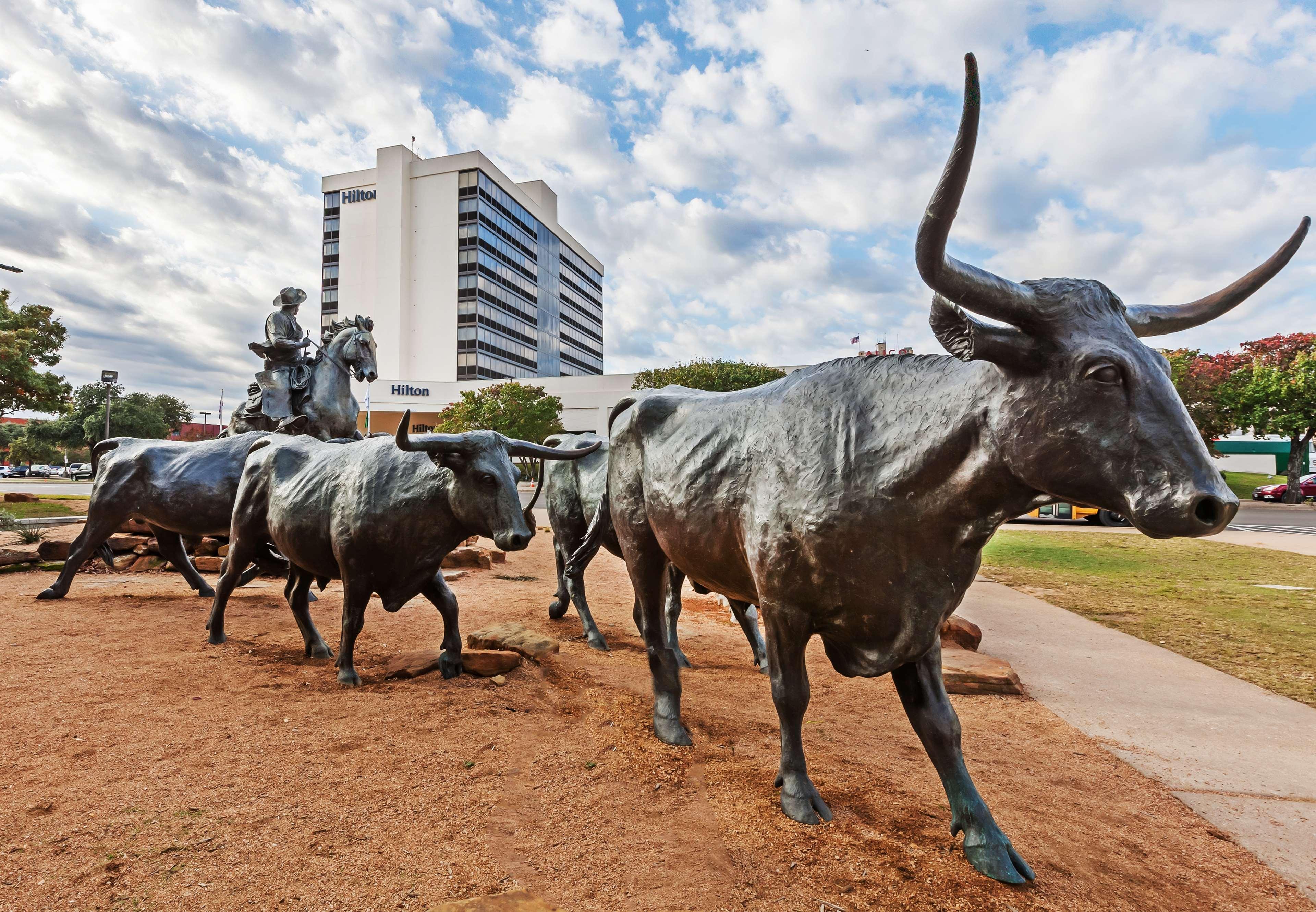 Hilton Waco image 5