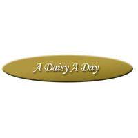 A Daisy A Day image 10