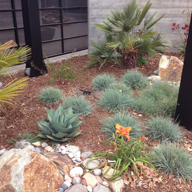 All Seasons Gardening & Landscaping image 3