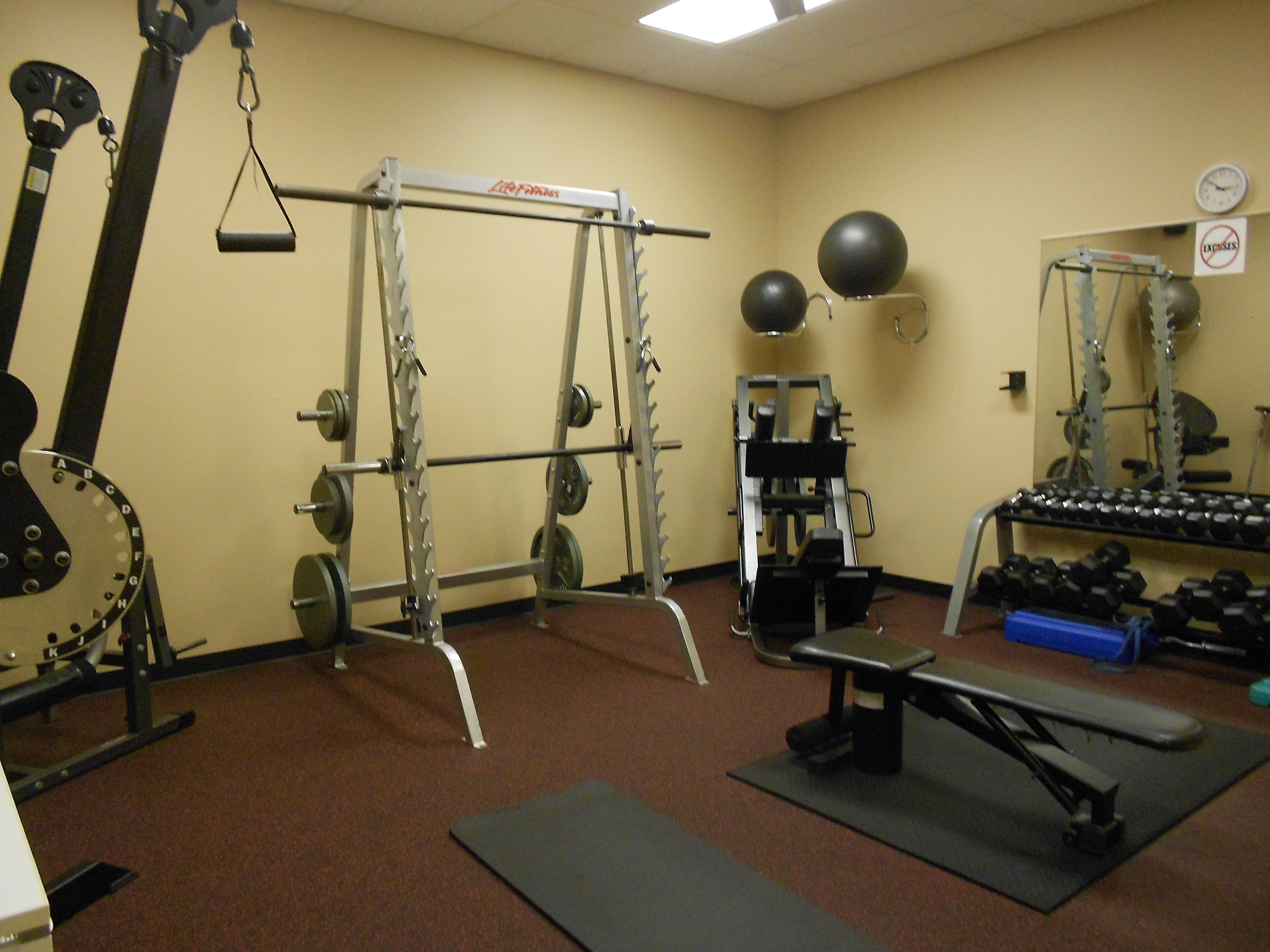 Personal Level Fitness image 3