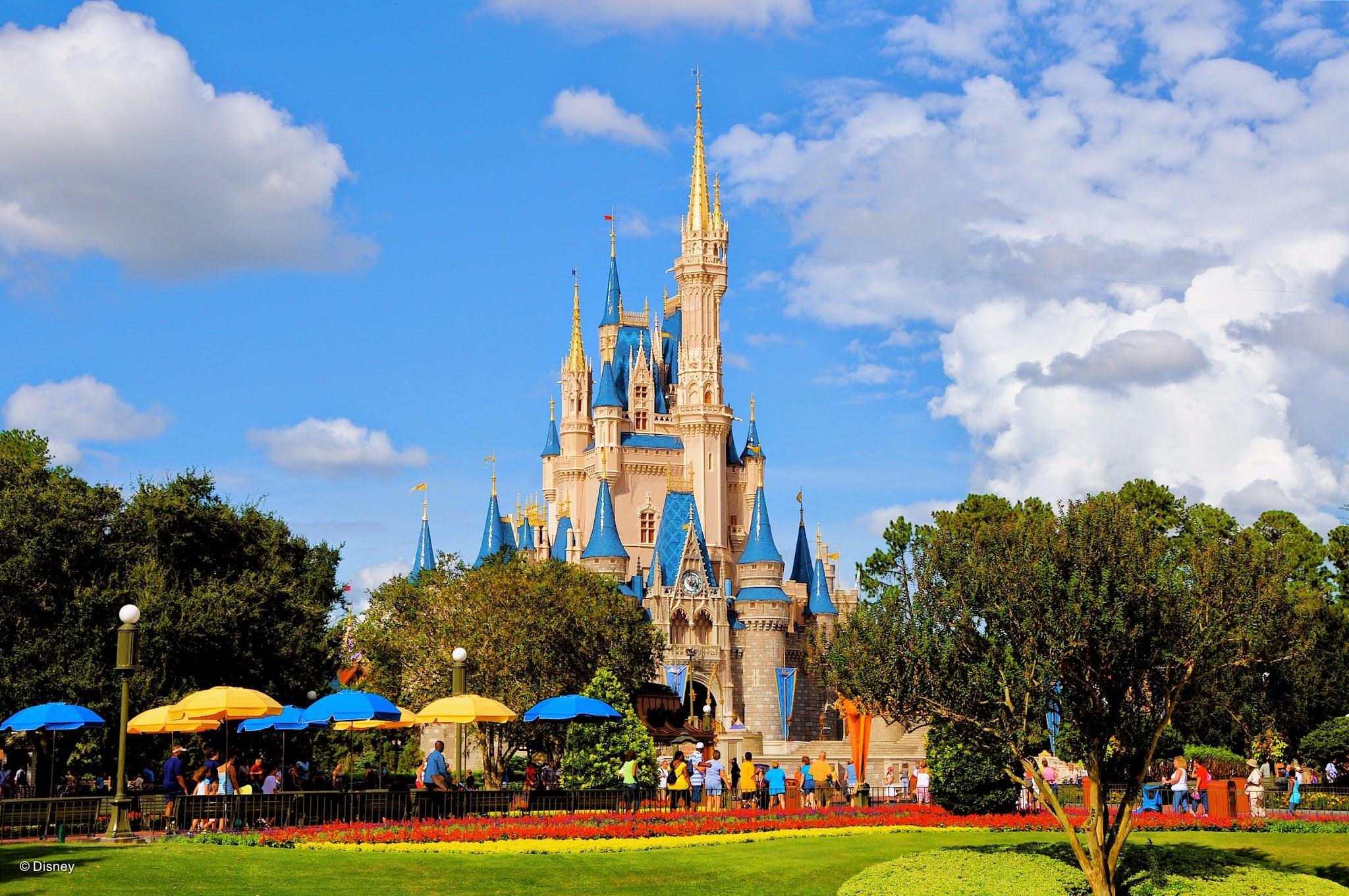 Walt Disney World® Resort image 91