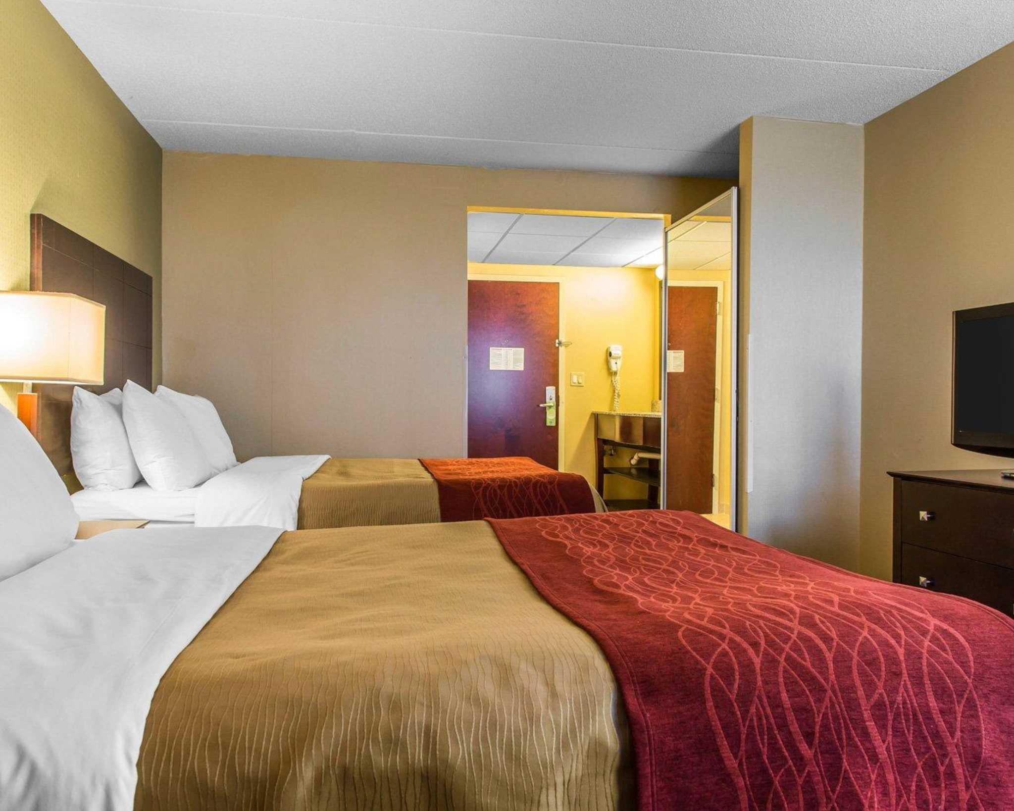 Comfort Inn & Suites East Hartford - Hartford image 17