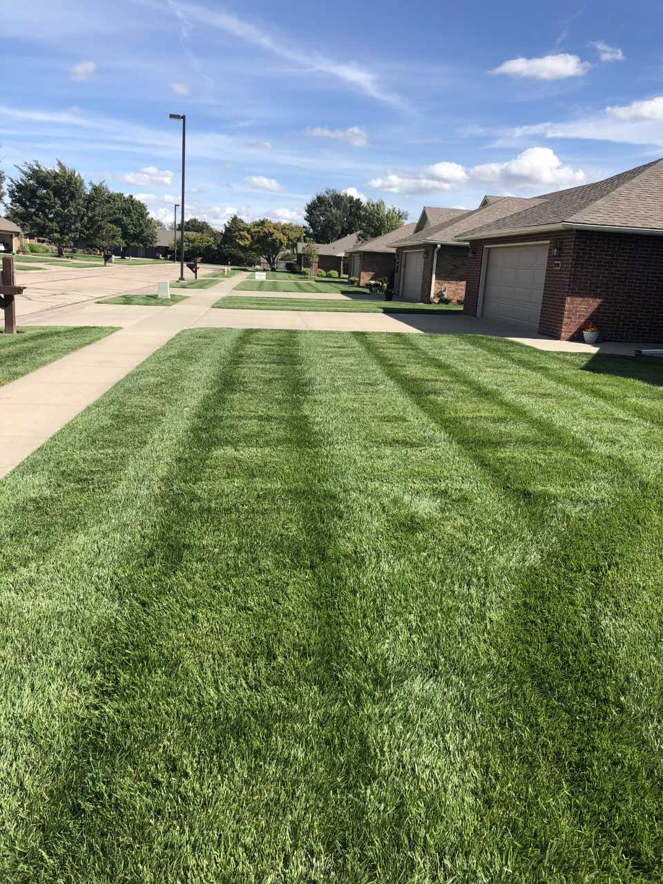 Sallee Lawn Care image 8