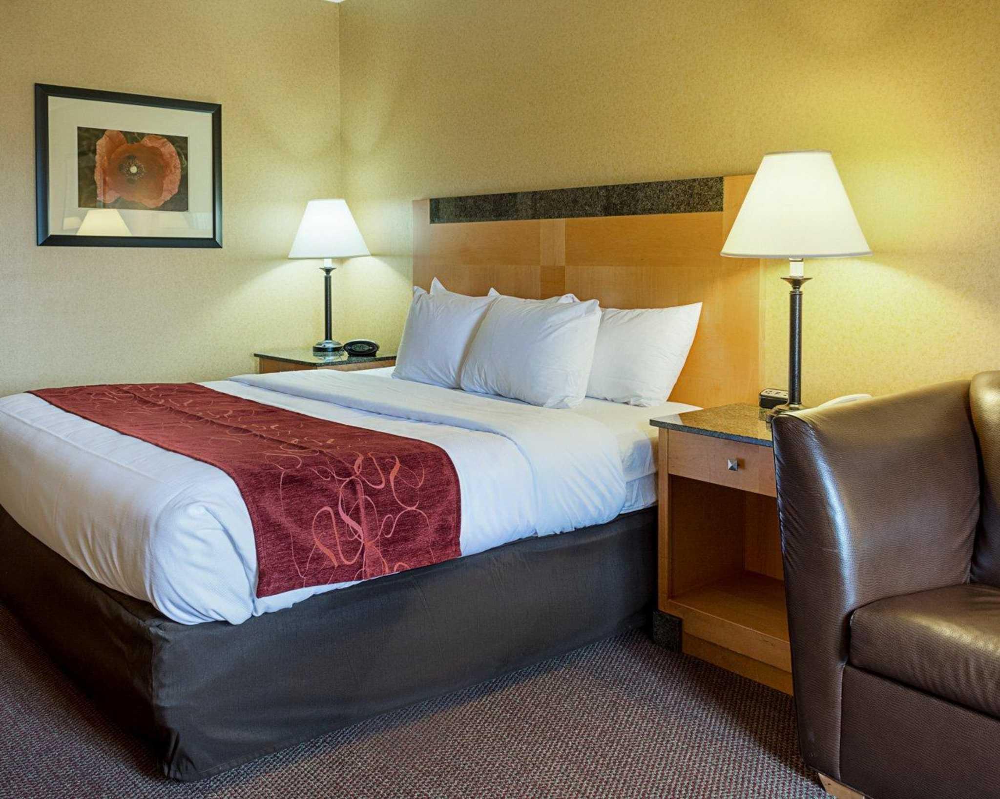 Comfort Suites Southpark image 5