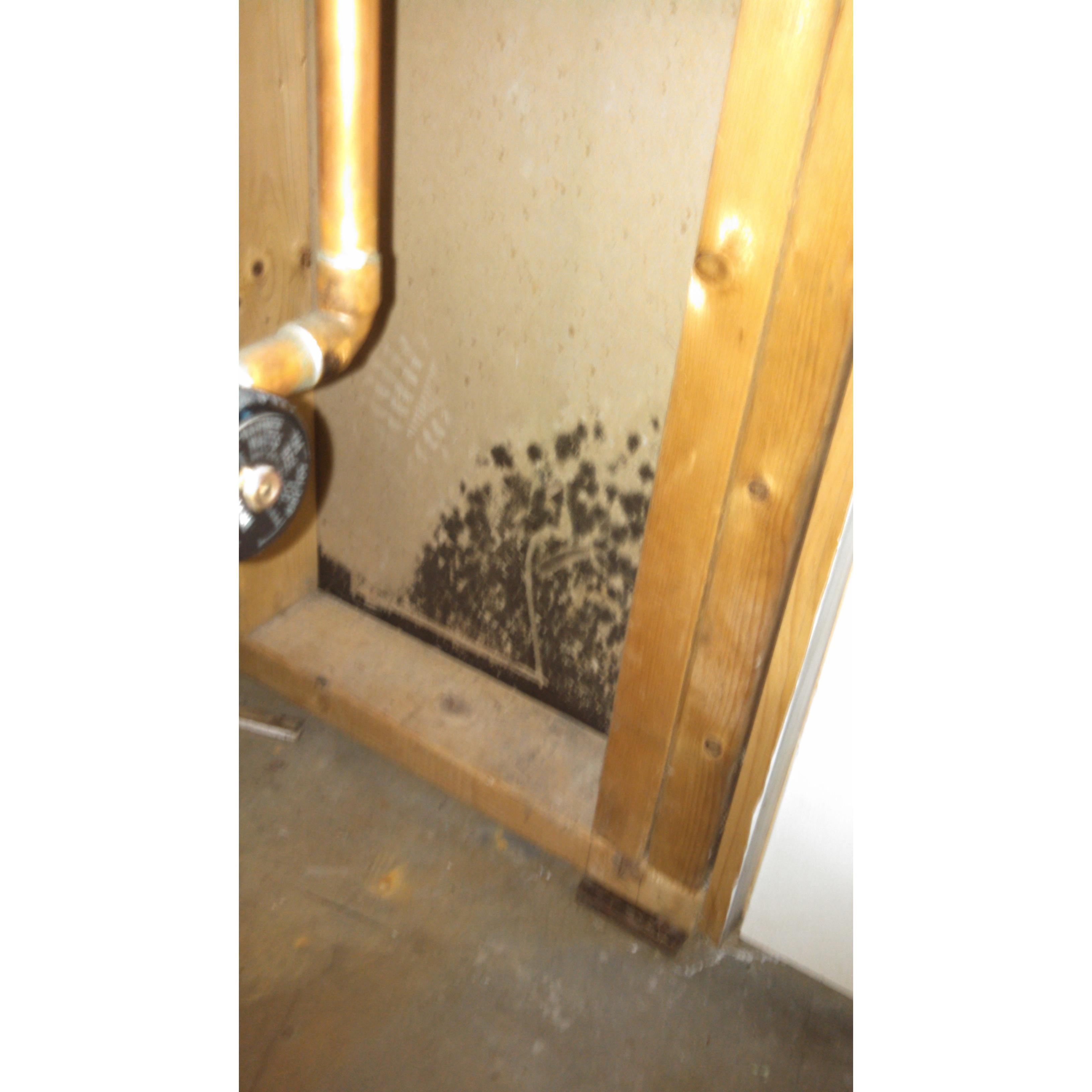 CLS Mold Testing, LLC - West Warwick, RI - Debris & Waste Removal