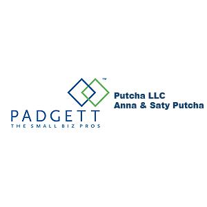Putcha LLC image 0