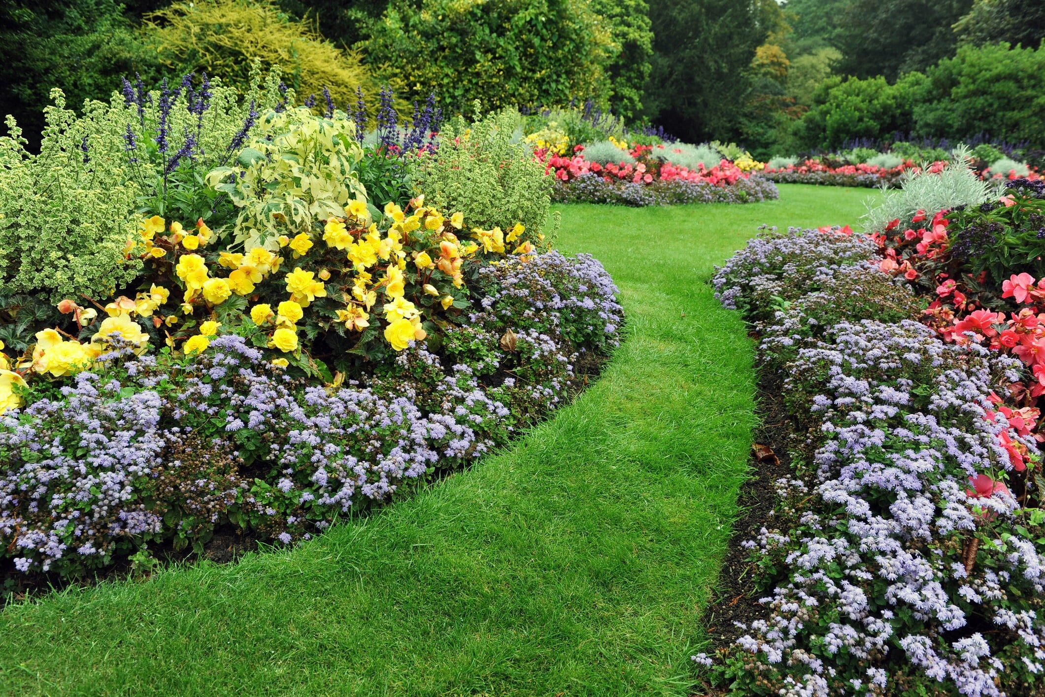 Shamrock's Nursery & Landscaping image 2