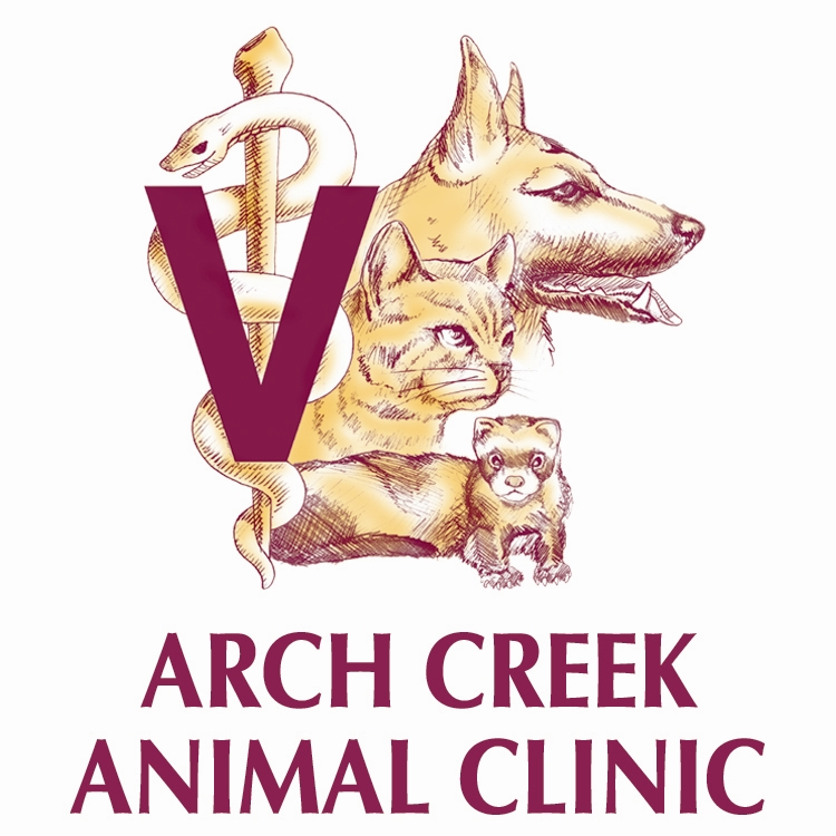Arch Creek Animal Clinic