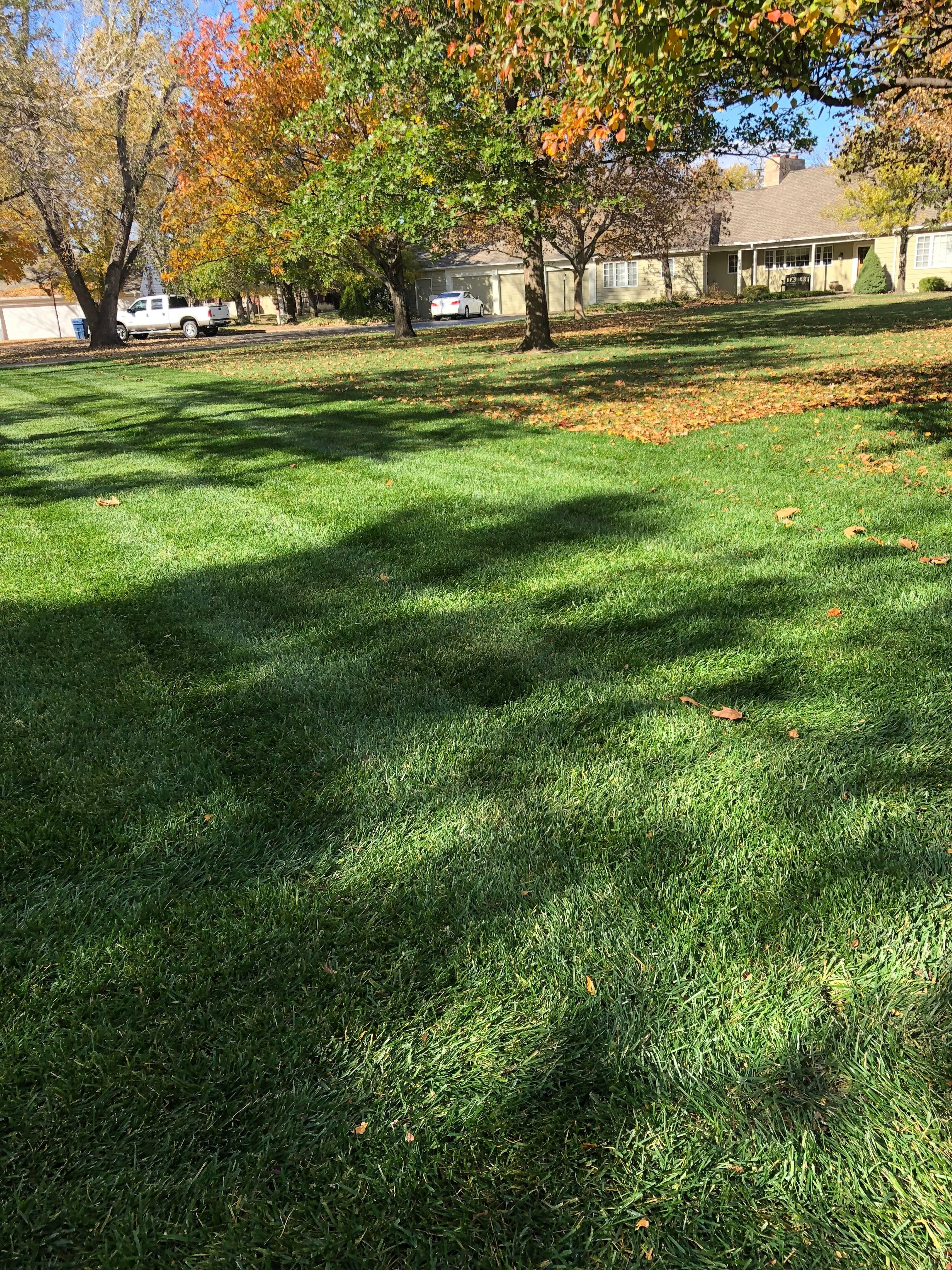 Sallee Lawn Care image 14