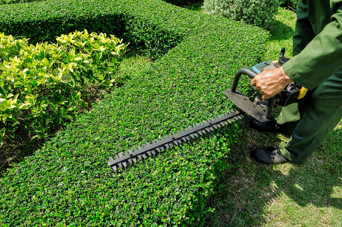 Smittys Family Lawn Care LLC image 0