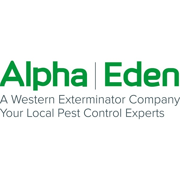 Pest Control Service in WA Seattle 98104 Alpha | Eden 800 5th Ave  (206)395-3859