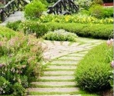 Keiffers Lawn & Landscape image 4