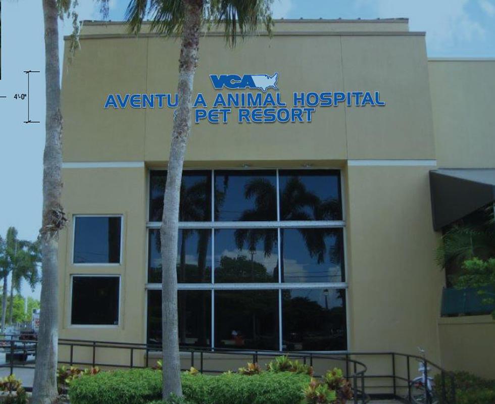 VCA Aventura Animal Hospital & Pet Resort