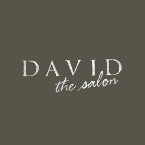David The Salon image 0