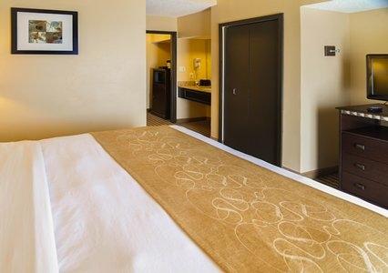 Comfort Suites Dfw Airport image 2