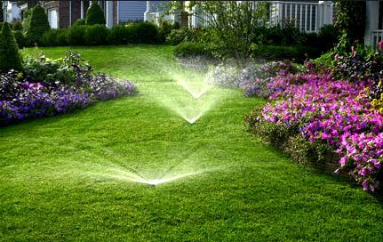 RainMasters Irrigation & JB Lawn Services LLC image 0