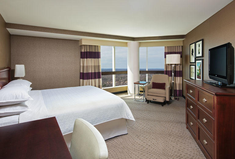 Sheraton Tysons Hotel image 8
