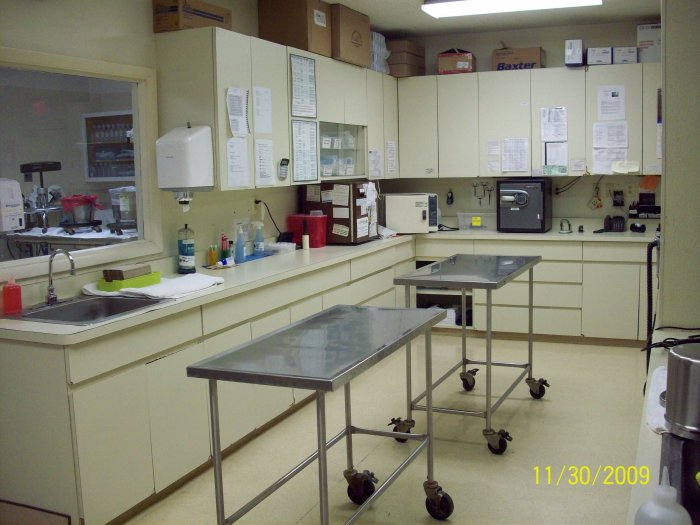 VCA Lewis Animal Hospital image 8