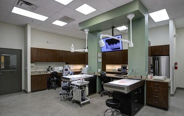 Raintree Pet Resort + Medical Center image 1