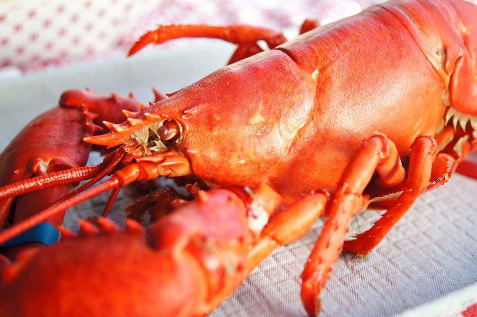 New England Seafood Company Restaurant & Fish Market image 4