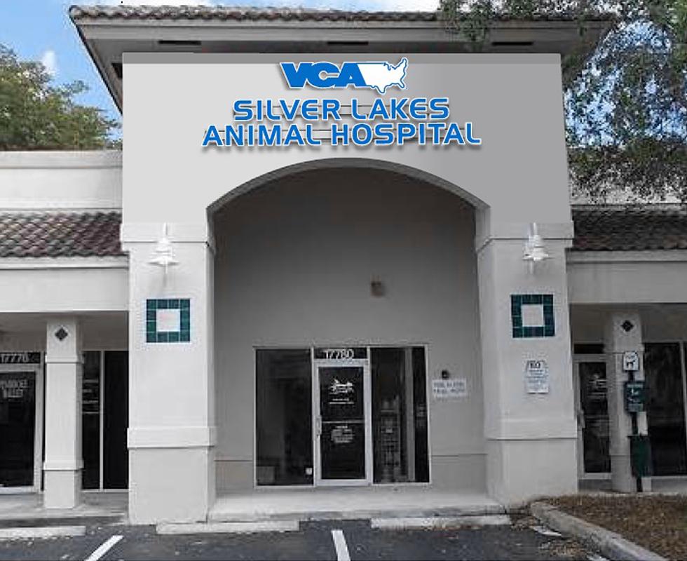 VCA Silver Lakes Animal Hospital image 0