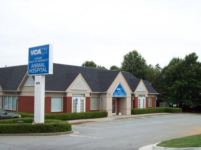 VCA Avalon-Heart of Gwinnett Animal Hospital - CLOSED image 7