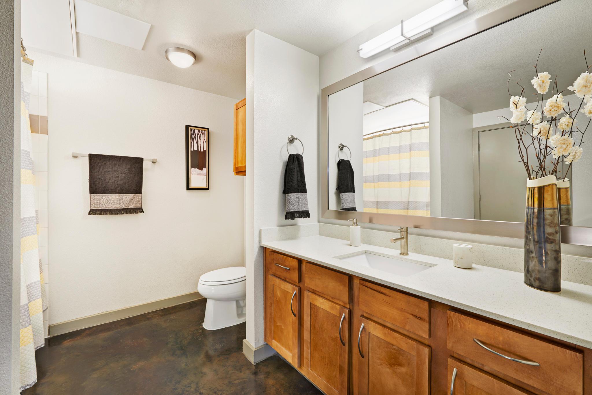 Camden Design District Apartments image 5