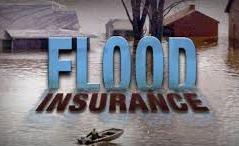 Bay Area Home & Auto Insurance image 9