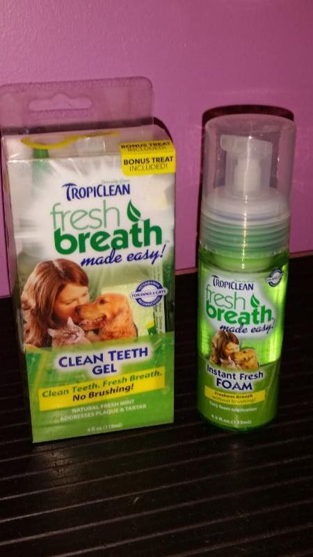 Compagnons Quatre Pattes à Gatineau: Tropiclean dental products foam and gel