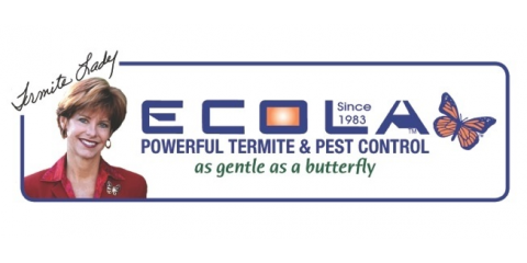 Ecola Termite and Pest Control Services image 5