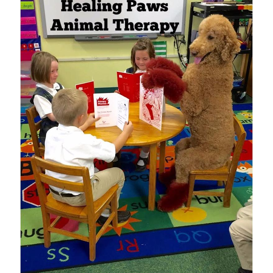 Healing Paws Animal Therapy - Super Dog Max