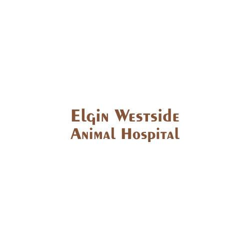 Elgin Westside Animal Hospital image 0