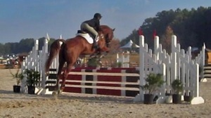 Salem Equestrian Center image 2