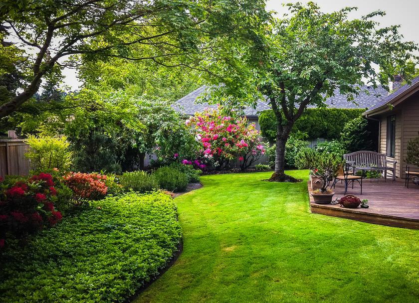 Sunrise Lawn Care LLC image 0