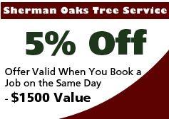 Sherman Oaks Tree Service image 1