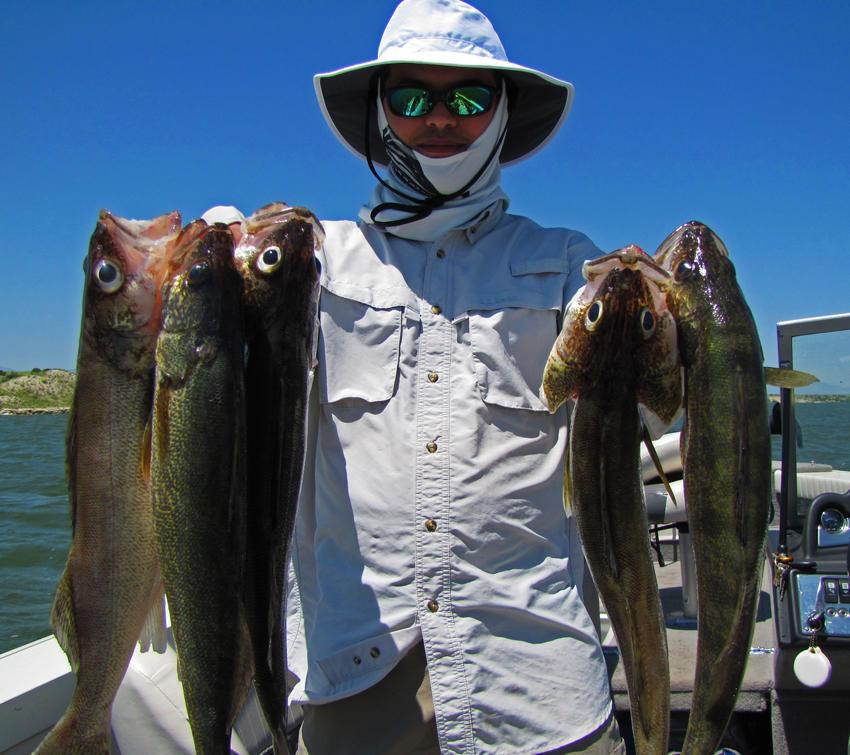 Colorado Adrenaline Fishing image 10