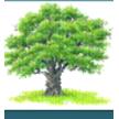 Royal Oak & Associates Inc image 0