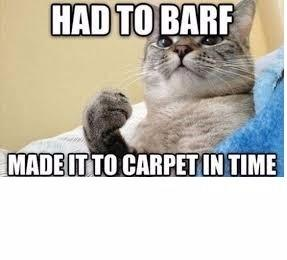 R & R Carpet Cleaning image 29