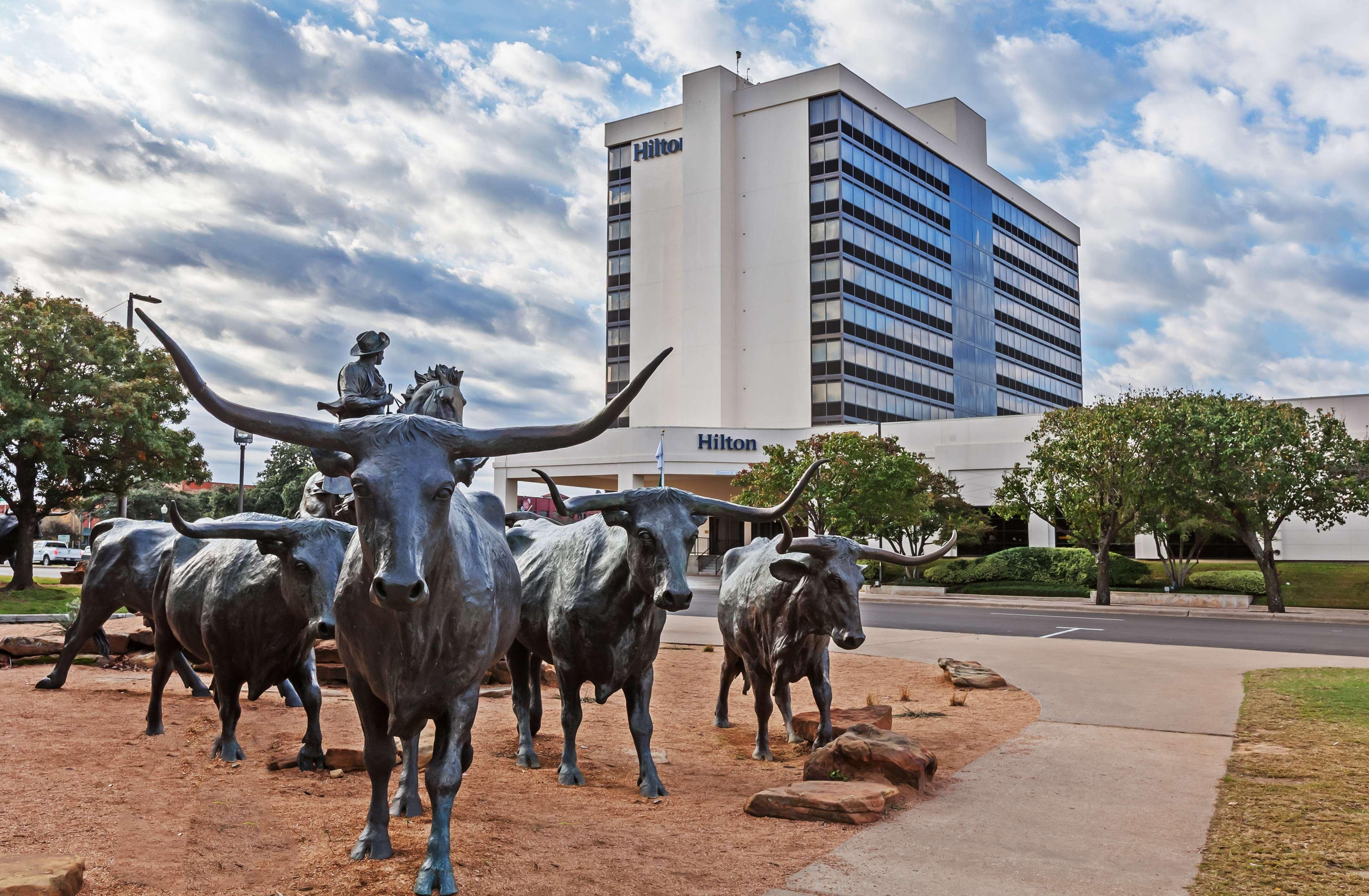 Hilton Waco image 9