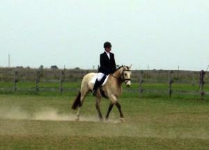 Salem Equestrian Center image 1