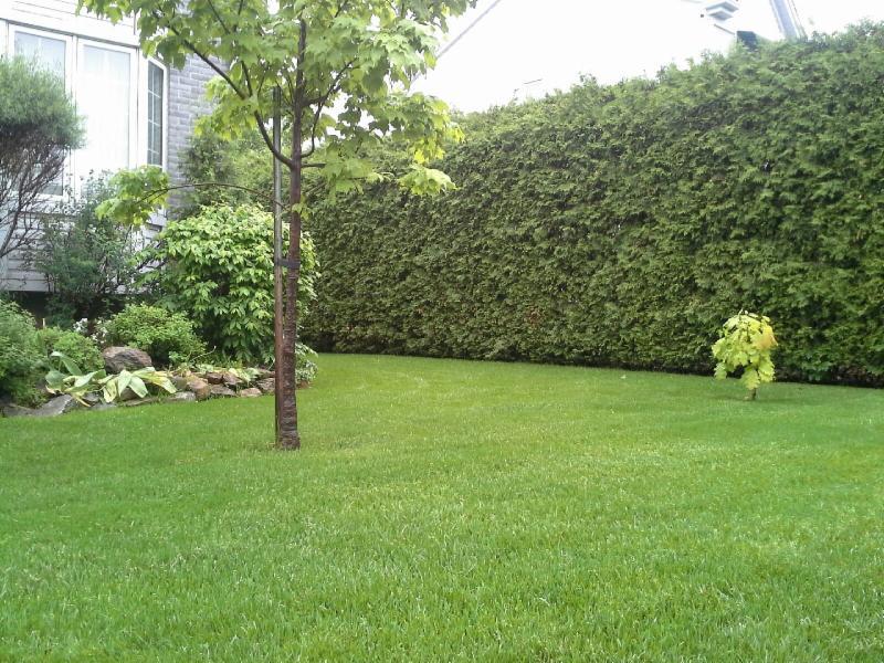 Entretien pelouse laval laval qc ourbis Pelouse entretien