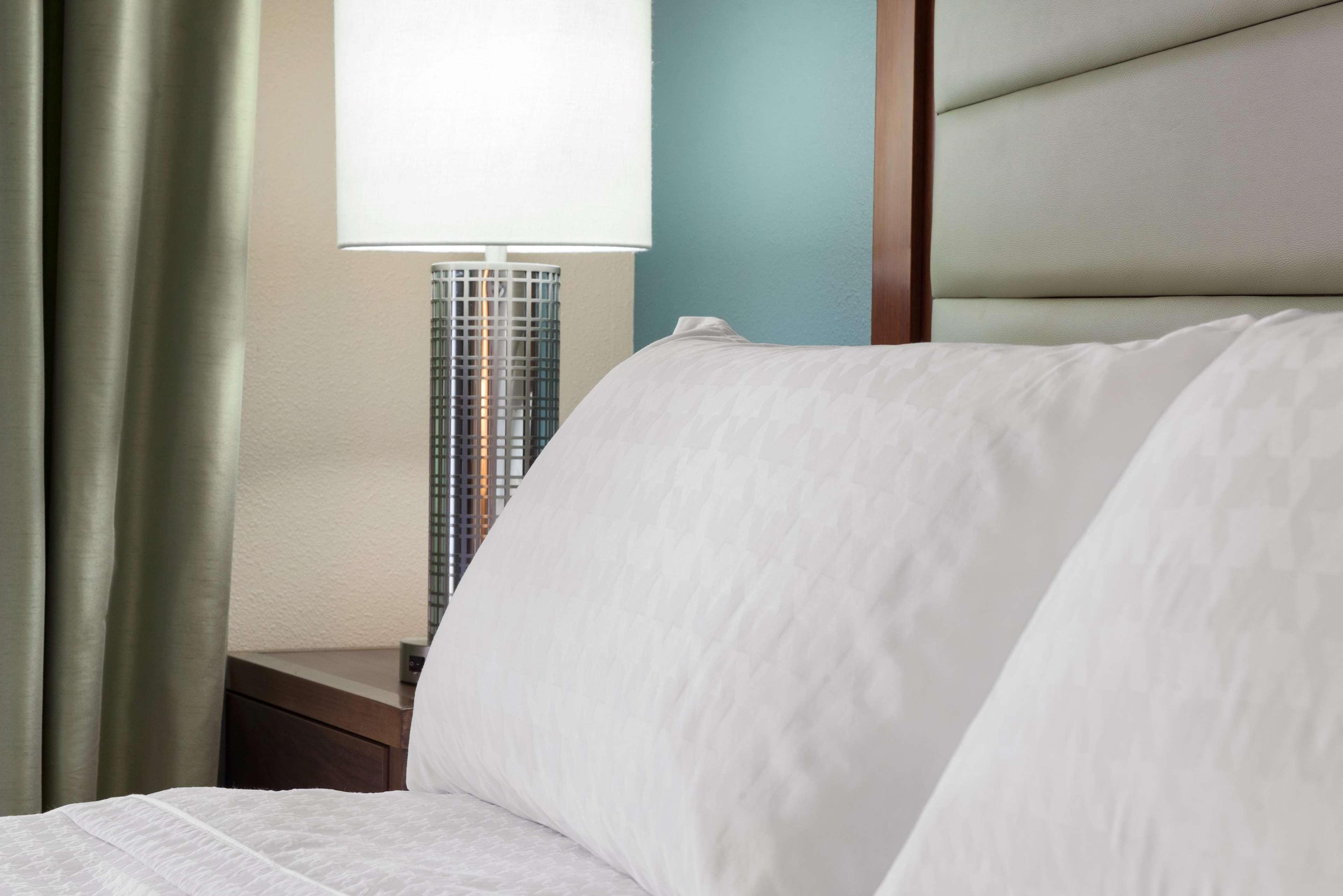 Homewood Suites by Hilton Charleston - Mt. Pleasant image 32