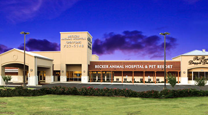 Vca Becker Animal Hospital And Pet Resort In San Antonio
