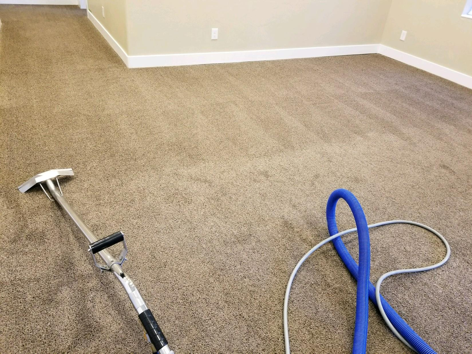 Kelly's Deep Clean Carpet & Upholstery Cleaning image 19